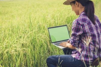 La conception de systèmes de production agricoles assistée par modèle (1/2)