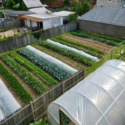 Gagner sa vie avec l'agriculture sur une petite surface