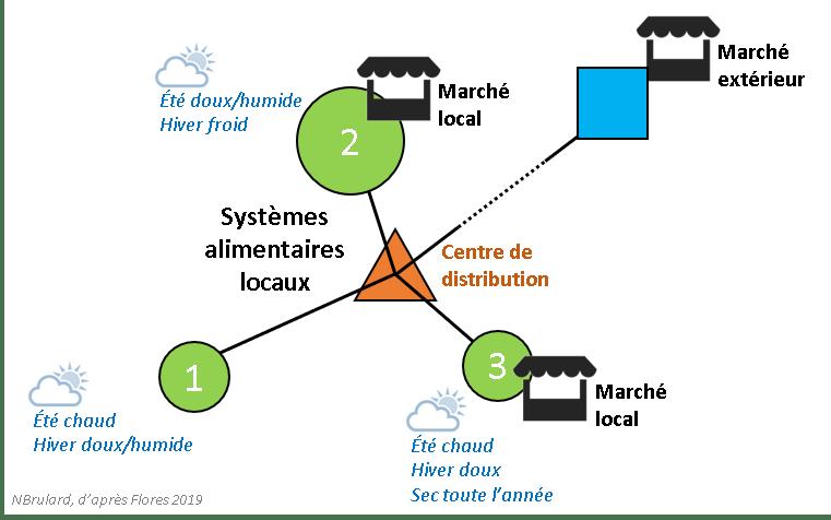 Coordonner la production des maraîchers périurbains pour alimenter les villes : un modèle quantitatif global (Flores & Ahumada, 2019)