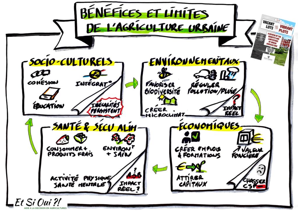 Sketchnote des impacts de l'agriculture urbaine d'après l'article